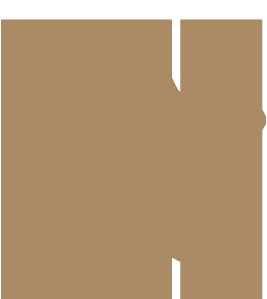 professionnal canelé mold